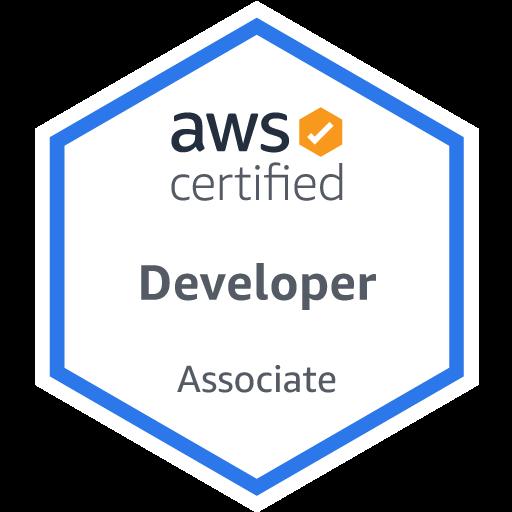 Take my AWS Certified Developer Associate test for me, Take my AWS Certified Developer Associate exam for me